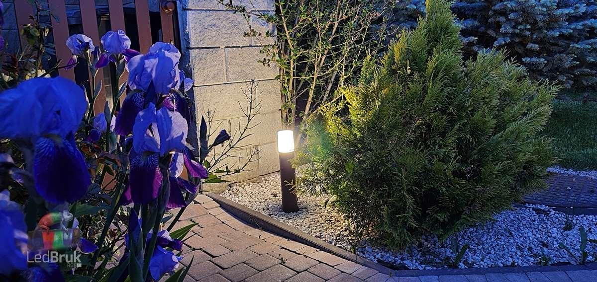 lampa ogrodowa słupek 24V LedBruk LED rgbw